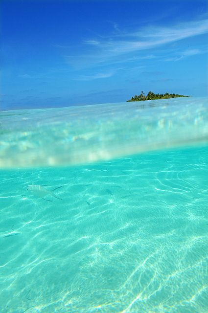 Maldives - not much more to say except ... AWESOME!  ASPEN CREEK TRAVEL - karen@aspencreektravel.com