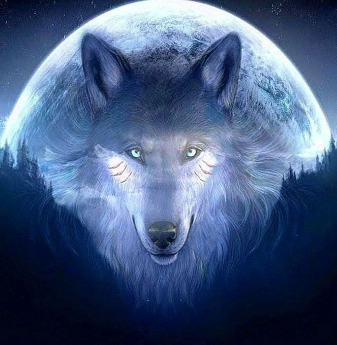 Awesome Wallpapers Dw Gaming Com Download Free On Twitter Wolf Background Wolf Wallpaper Wolf Pictures