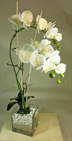 artificial orchids in glass vase                                                                                                                                                                                 More