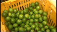 Alimentos de la canasta básica suben de precio.