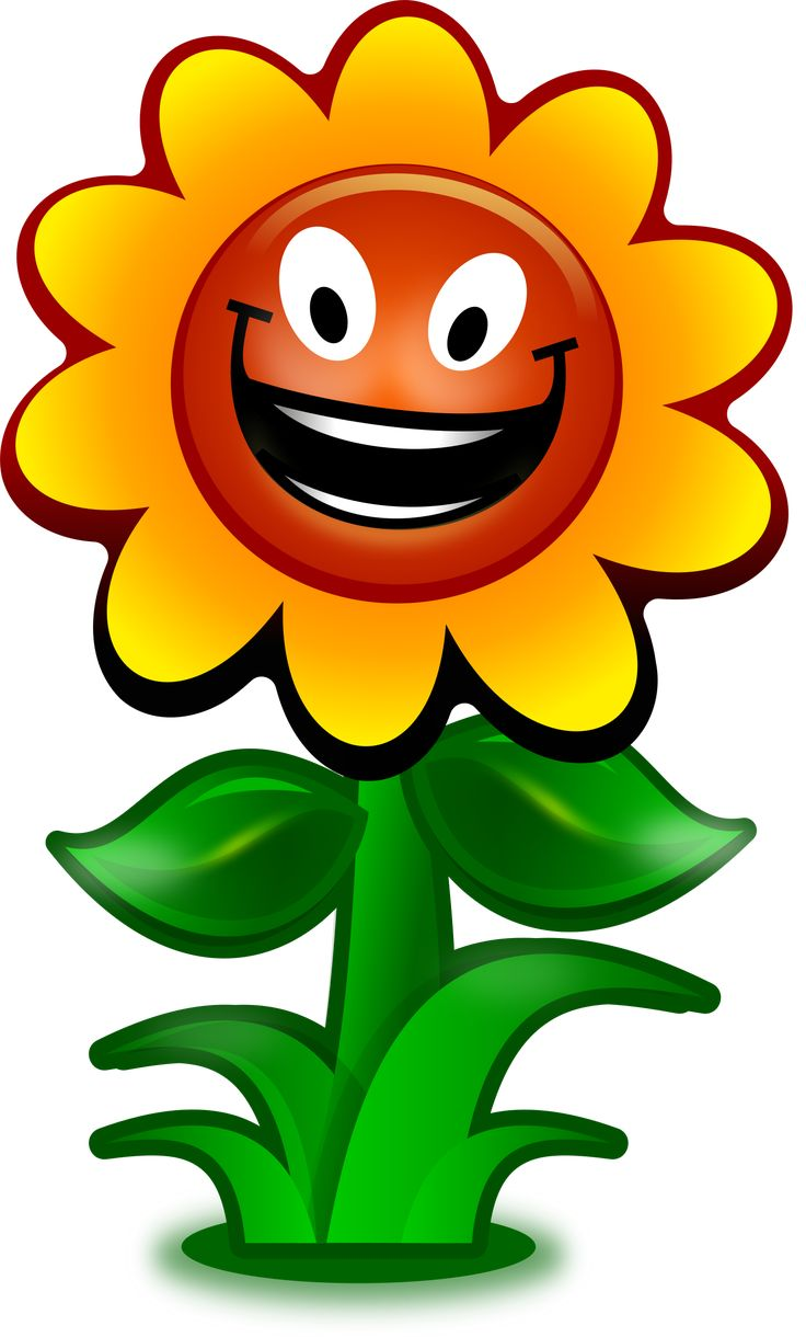 best 25 cartoon flowers ideas on pinterest cactus art