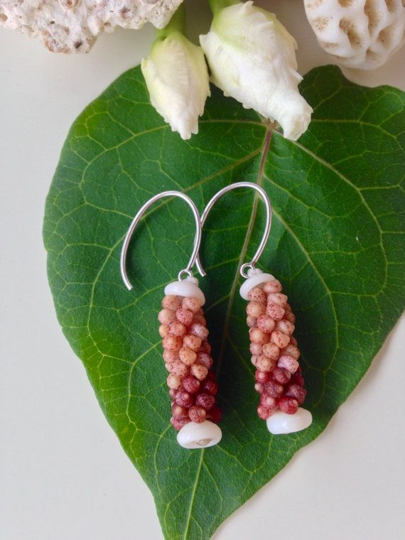 Shell Earrings - Shells - Rare Shells - Hawaii Shells - Natural Art Eco Friendly Island Earrings- Authentic High Quality Kauai Shells