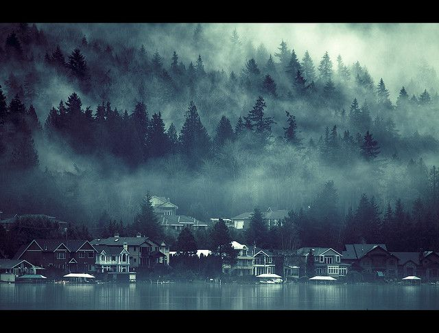 Misty trees, glassy water, classic wood houses . . . :)