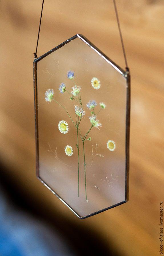 Купить Гербарии в стекле - комбинированный, экостиль, гербарий, подарок на любой случай, подарок, травы, цветы