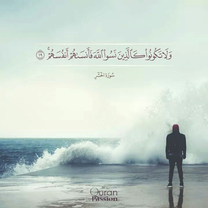 تتحدث عن العشق فأجمل العشق عشق السجود بين يدي الله لا تنسي ذكر الله فهو سبيلك الي حياة أجمل أحلي وأفضل Quran Quotes Quran Passion