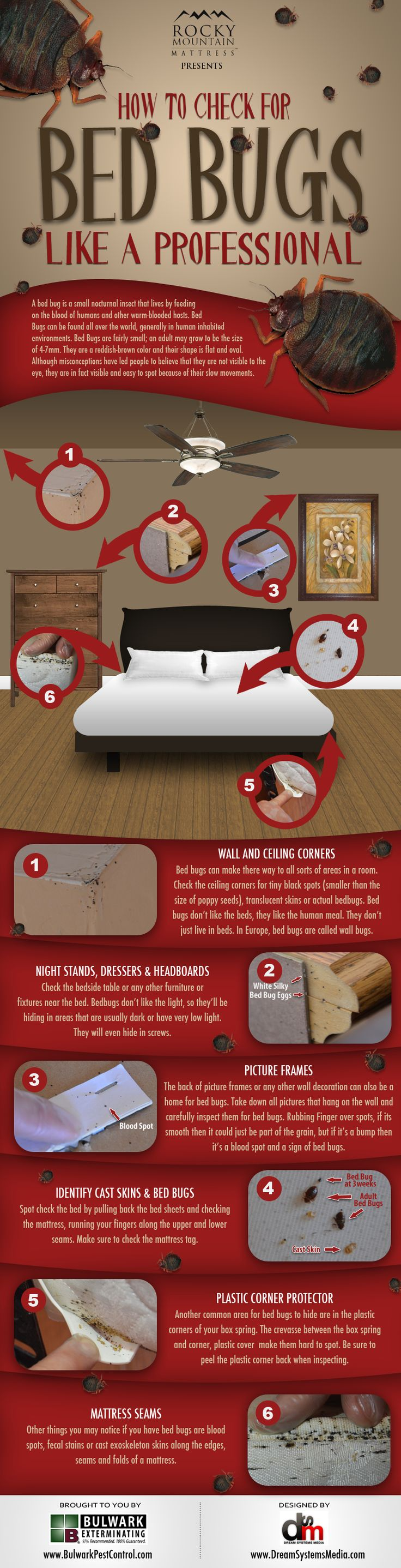 Everyone should learn how to inspect for bed bugs. Here is a simple graphic that explains how.    http://www.rockymountainmattress.com/blog/2012/05/22/how-to-check-for-bed-bugs-like-a-professional/
