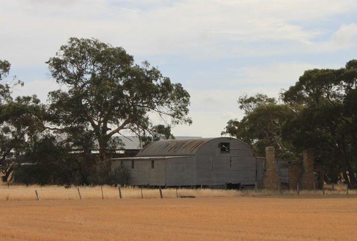 Eastwood's shearing shed near Yearinga