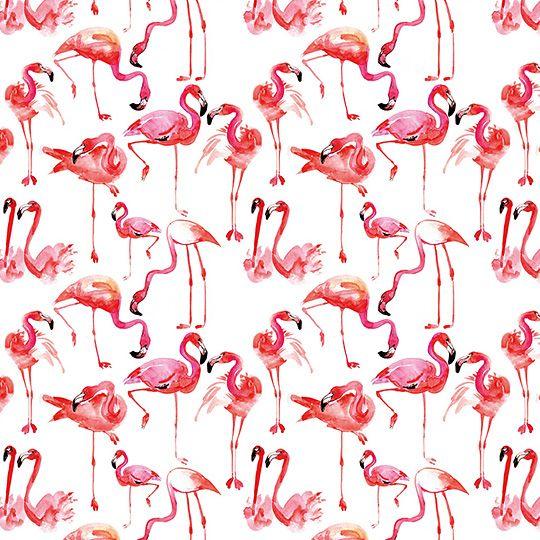 пляж, картинки фламинго для распечатки черно белые фон такие