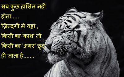 Lion Live Wallpaper Iphone X Zindagi Shayari Images Latest Twitter Whatsapp Facebook