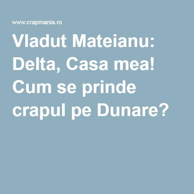 Vladut Mateianu: Delta, Casa mea! Cum se prinde crapul pe Dunare?