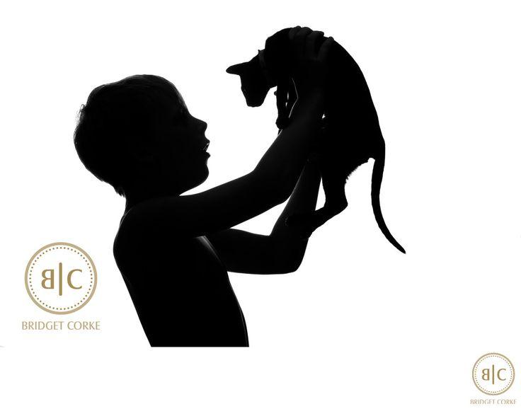 Bridget Corke Photography - Black Oriental Cat Silhouette Photographer Johannesburg: