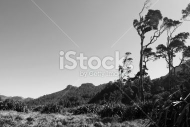 Wild West Coast Landscape Royalty Free Stock Photo