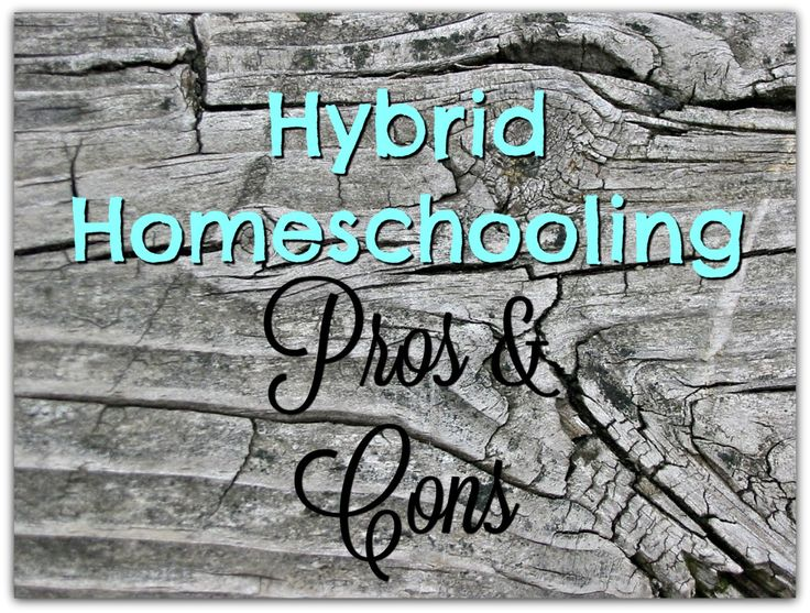best homeschooling pros and cons ideas online hybrid homeschooling pros and cons homeschooling