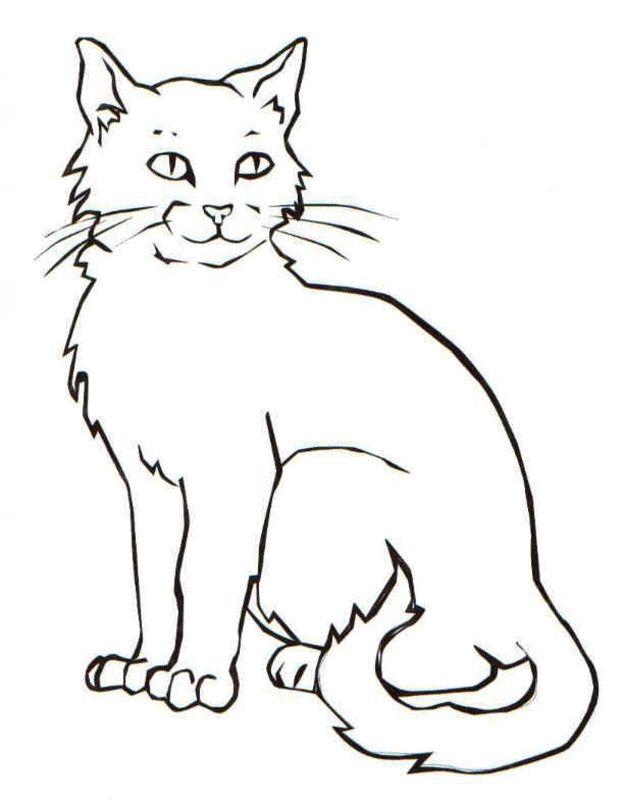 Światowy dzień kota kolorowanki 1 do druku materiały