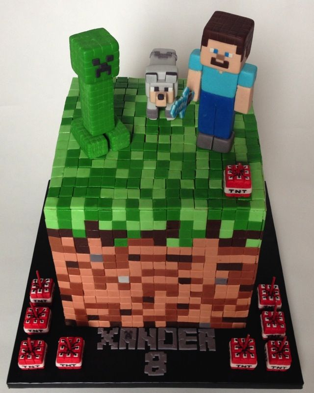 Mindcraft Cake  Seriously?  Where do I get THIS cake?  Where is this other 8 year old Xander?