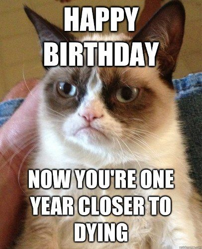 top 10 grumpy cat memes-- hahahah! Grumpy cat and I see eye to eye, I actually say something just  like this every year on my birthday.