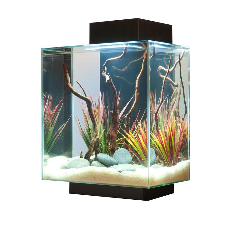 Fluval Edge Aquarium Kit in Black - Fluval Edge Fish Tank and Desktop Fish Tank from petco.com