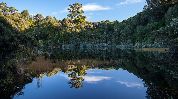 Tranquil Lake Wilkie Catlins New Zealand