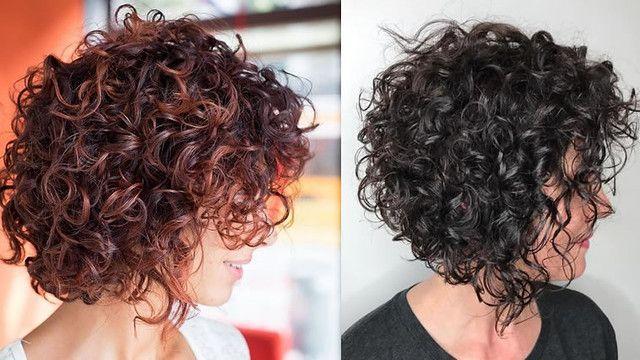 Short Bob Curly Hair 2019 2020 Short Curly Bob Hairstyles Curly Hair Styles Short Curly Haircuts