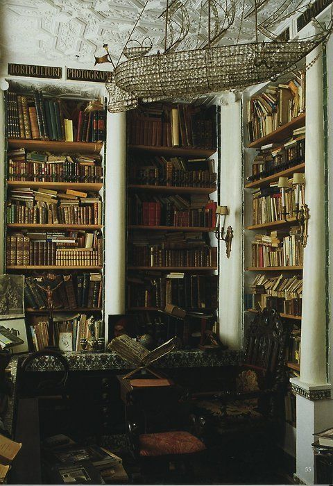 The lovely, boat-shaped chandelier, as well as the (moldering?) books add so much character to this library--both antiquated and glamorous.