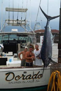 25 best ideas about offshore fishing on pinterest for Dauphin island fishing report