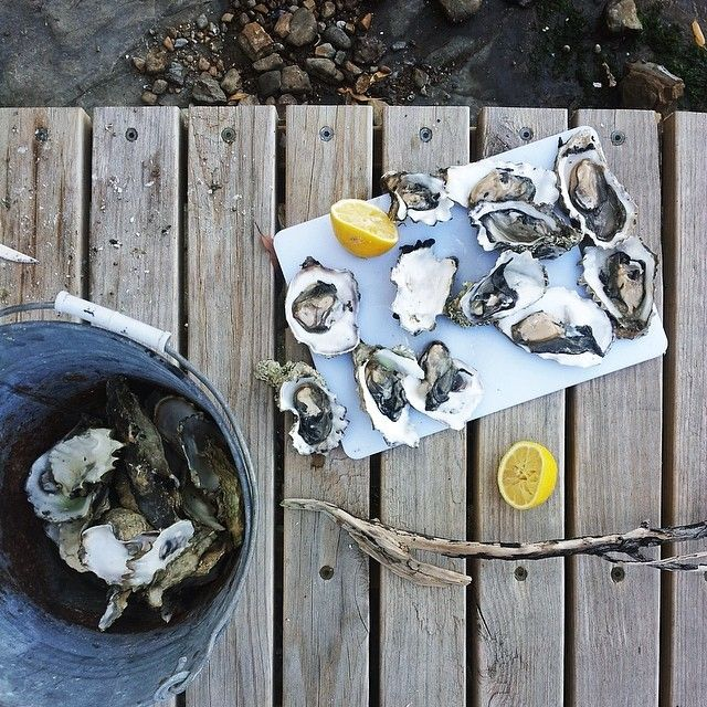 Tasmania is making a name for itself for farming some of the tastiest oysters all along its coastline. What better way to enjoy them than with a slice of lemon, glass of Tassie wine and one of the island's many knockout coastal views. #oysters #tasmania #discovertasmania Image Credit @Elizabeth Cassinos Style magazine