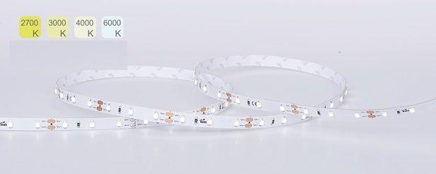 Kit: 5 Metre Reel LED 3528 Strip Light, Single Colour + 30W LED Driver