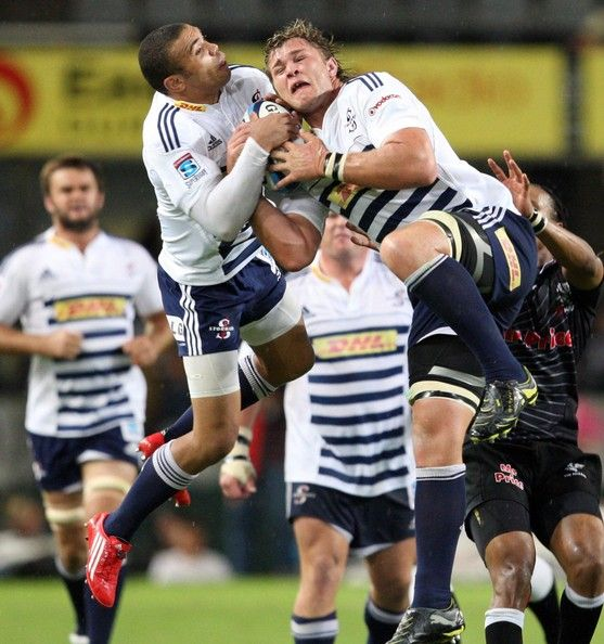 31 Best Rugby - WP Stormers Images On Pinterest