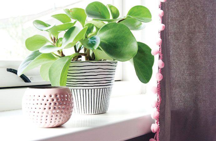 Met kleine details als roze bolletjes aan een gordijn kan je een meisjeskamer helemaal af maken. #wonenvoorjou