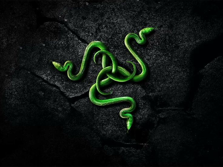 Get your very own Razer wallpaper with just a click on the link.