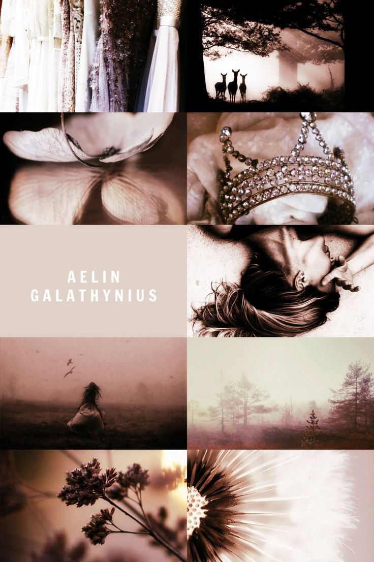Find This Pin And More On Throne Of Glass Series