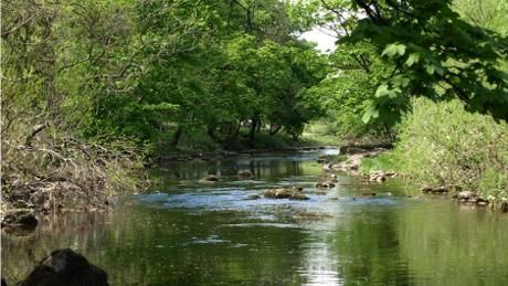 Buckden to Starbotton hillside and river walk.© National Trust