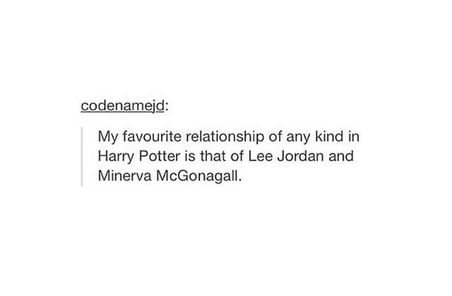 hp; harry potter; lee jordan; minerva mcgonagall;