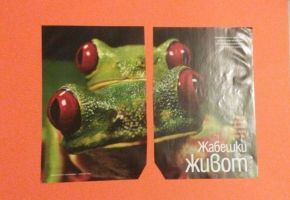 simple collages -frogs by LenaMorgue90