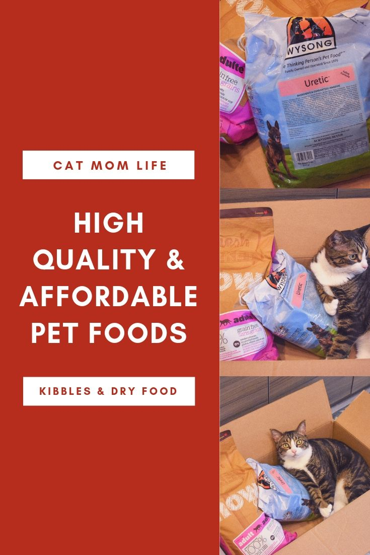 Are You Feeding Your Cat Wrong You May Think Kitty Is Content With A Big Bowl Of Kibble That S Available At Her L Cat Nutrition Kitten Food Brands Kitten Food