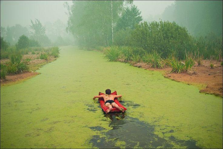 Não há nada como nadar em seu próprio pântano. Por Roman Mokrov.
