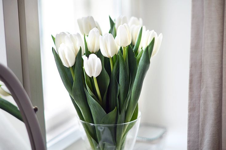 White tulips from Mariannnan :) #spring