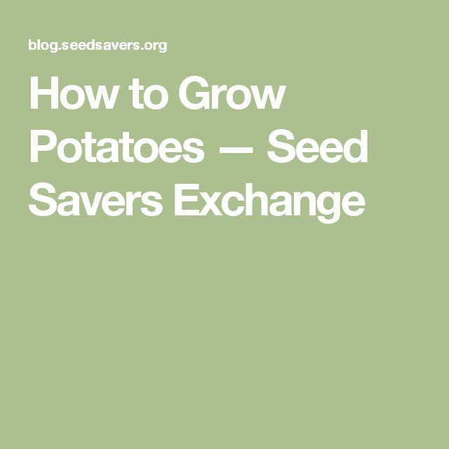 How to Grow Potatoes — Seed Savers Exchange