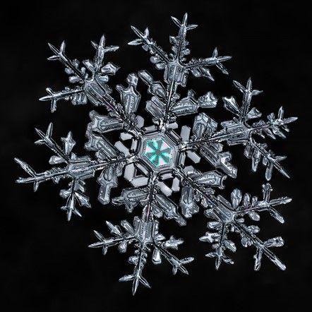 Winter Wonderland: Don Komarechka's snowflakes