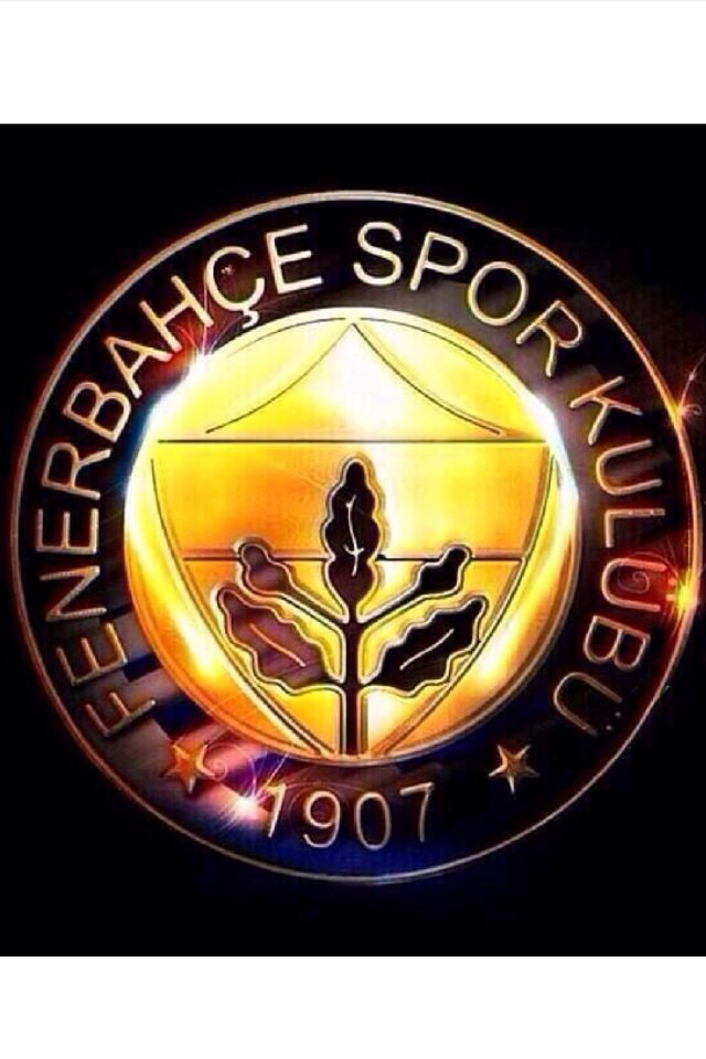 Fenerbahce, Turkish Most League Champion