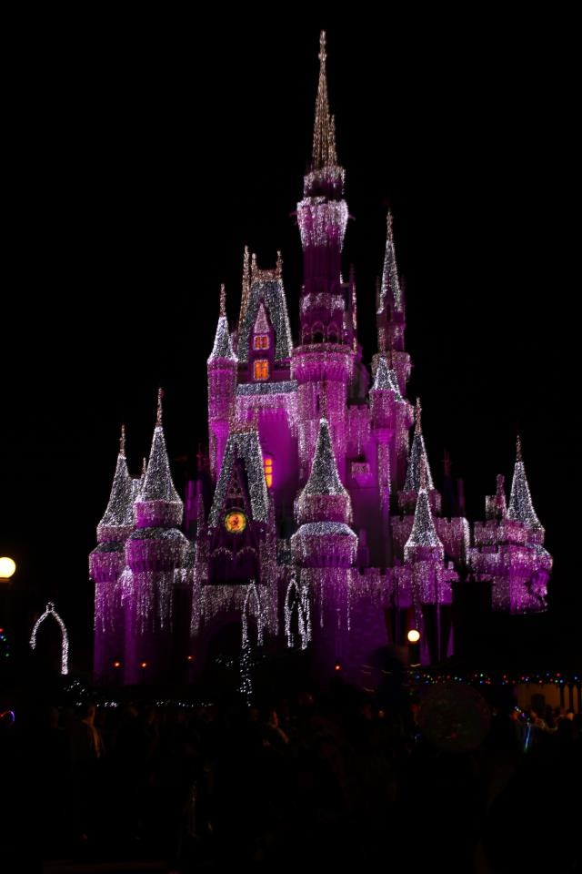 Cinderella Castle Christmas Lights
