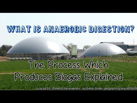 <p><strong>What is Anaerobic Digestion and How Does it Work? </strong></p> <p>We answer the question of what is this process call AD and how does AD work in our video?</p> <p>More Information about what is anaerobic digestion:</p> <p>Anaerobic Digestion - American Biogas Council<BR> https://www.americanbiogascouncil.org/biogas_what.asp</p> <p>What is Anaerobic Digestion? - Biogen<BR> www.biogen.co.uk/Anaerobic-Digestion/What-is-Anaerobic-Digestion<BR> Anaerobic digestion is the process by…