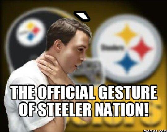 Funny Steelers Meme : Best images about memes on pinterest disney aaron