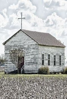 Church By Cotton Field