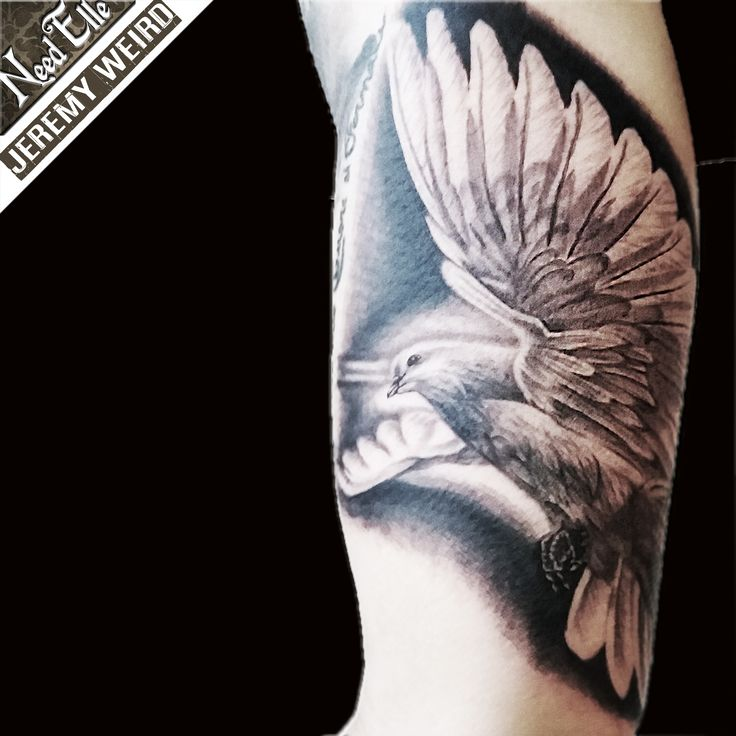 Dove of Peace realistic tattoo by jeremy WEIRD Tatouage réaliste colombe de la paix NEED ELLE TattooShop Lille (France)