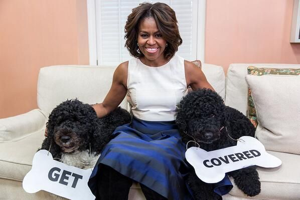 March 31, 2014 | The First Dogs say so: ofa.bo/pTF #GetCoveredNow