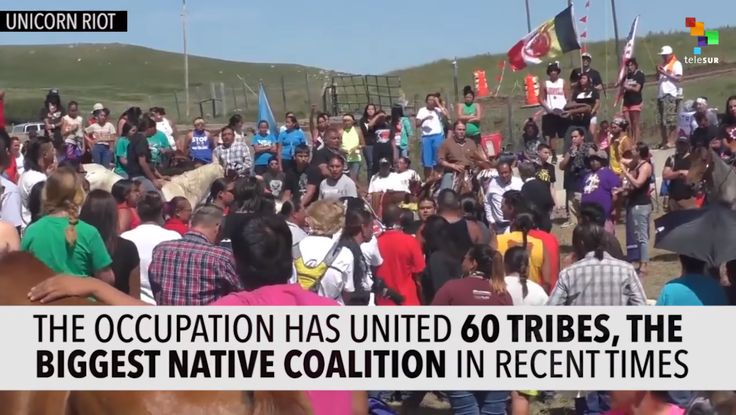 Historic Resistance to Dakota Pipeline - Nipmuc Connections. http://nipmucconnections.com/native-american-news/historic-resistance-to-dakota-pipeline/