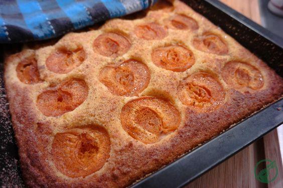 Marillenkuchen – Low Carb und Glutenfrei