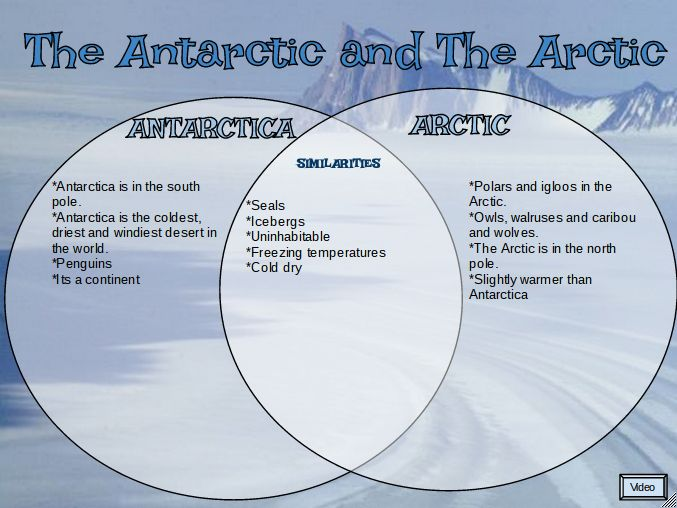 The Arctic And Antarctic