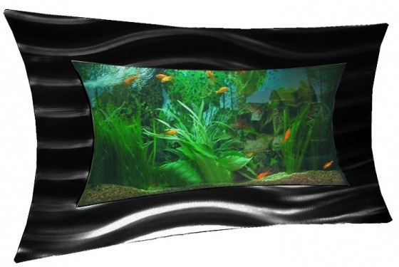Top 40 ideas about cool fish tanks on pinterest aqua for Cool freshwater fish for tanks